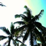 Viajar a Indonesia: donde comer en Bali